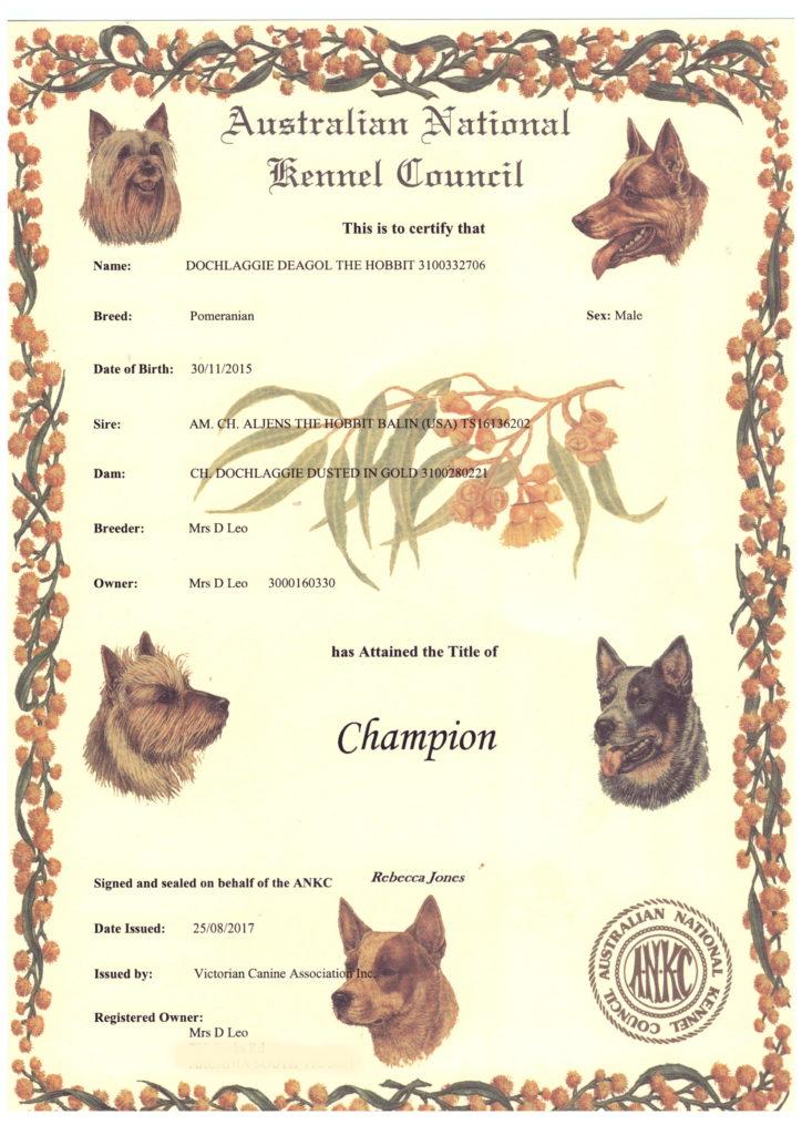 Melbourne Pomeranian, Dochlaggie Deagol The Hobbit's Championship title