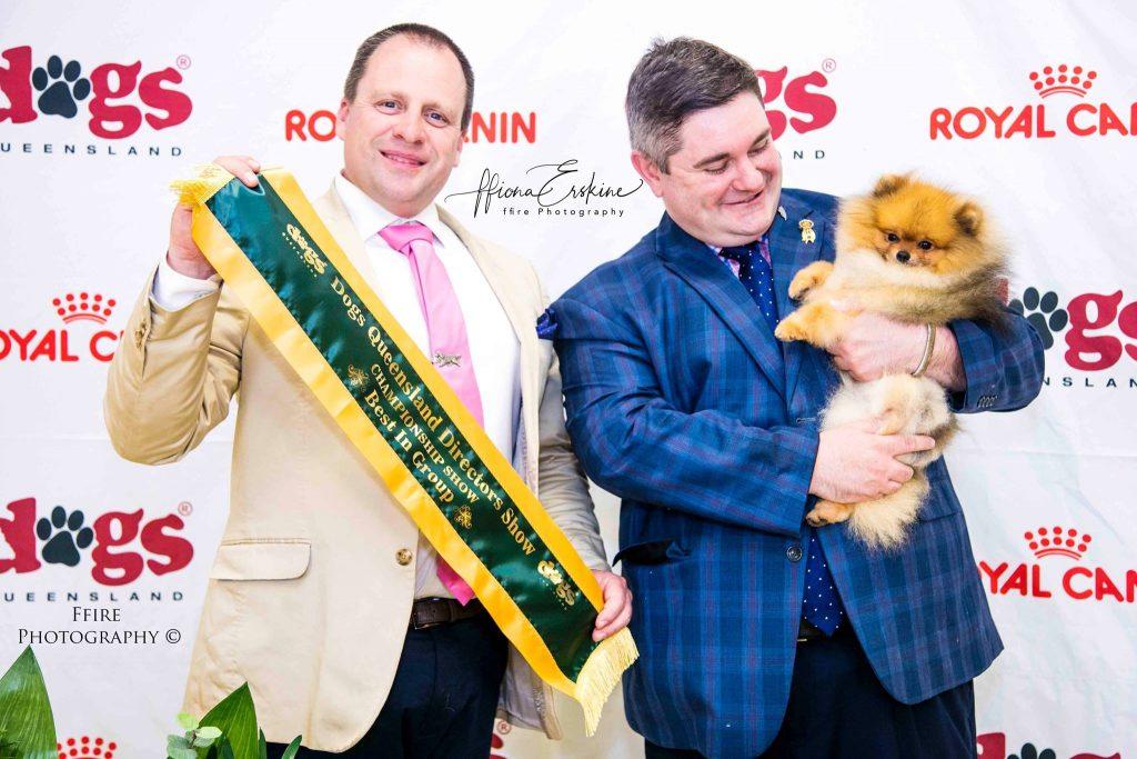 Champion Dochlaggie Dark N Dangerous wins BEST EXHIBIT IN GROUP under toy specialist Mr. M. Morse.